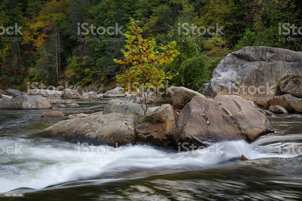 Autumn at Wilson Creek stock photo