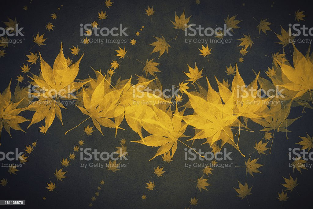 Autumn Bacground royalty-free stock photo