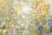 Autumn background, blurred