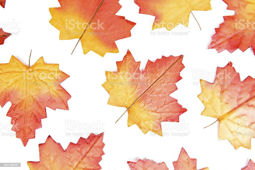 autumn background isolated on white royalty-free stock photo