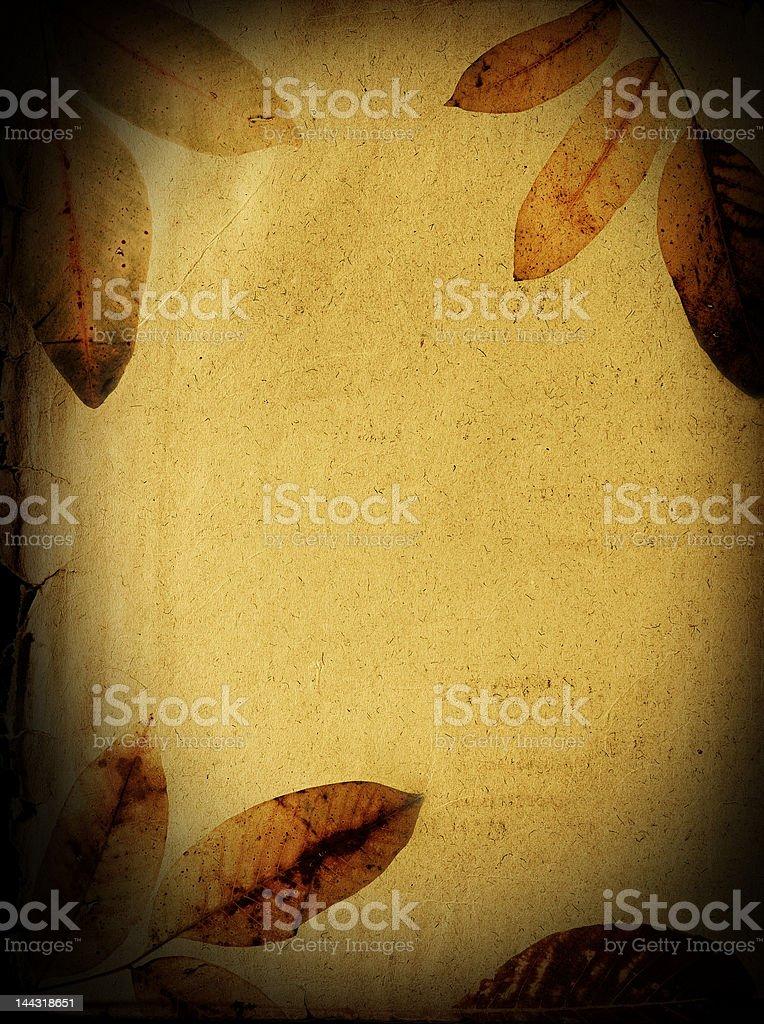 Autumn background royalty-free stock photo