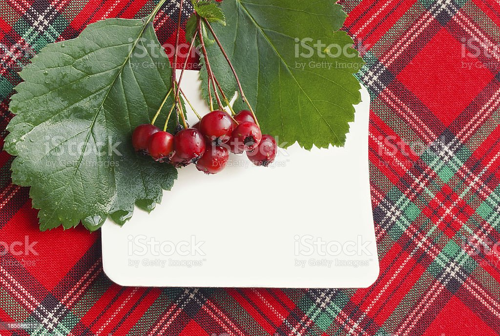 Autumn background with berries of hawthorn royalty-free stock photo