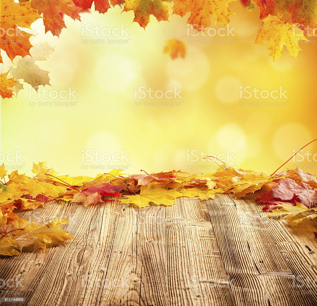 Autumn background with empty wooden planks stock photo