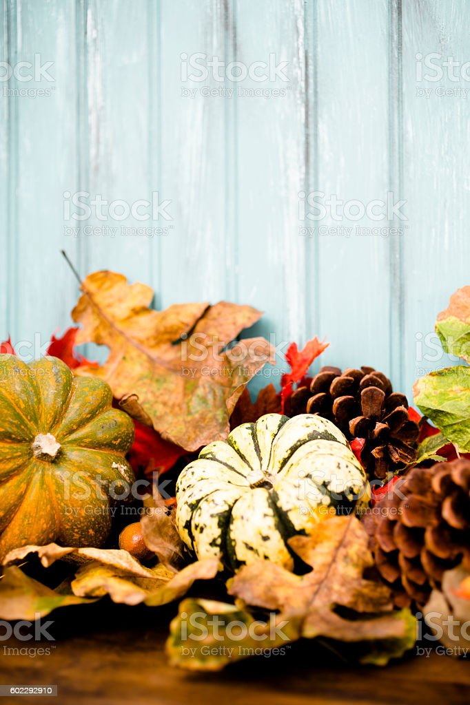 Autumn background with gourds, squash, leaf decorations. stock photo