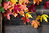 Autumn background with maple leaves on old wood