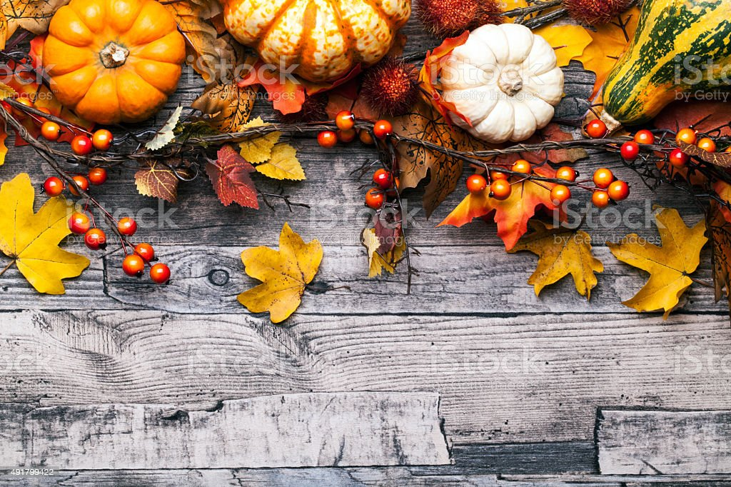 autumn background with pumpkins, leaves and berries stock photo