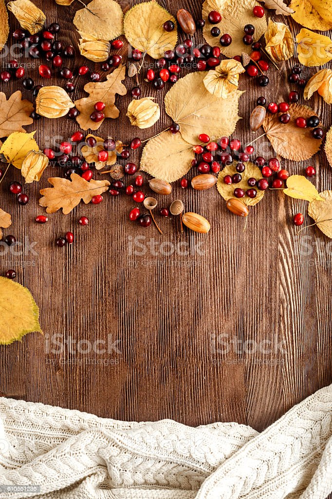 Autumn background: wood with oak leaves and acorns stock photo