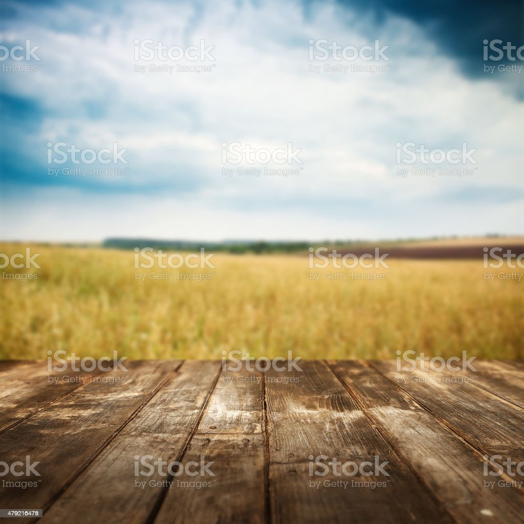Autumn background. Wooden floor and defocused landscape on background stock photo