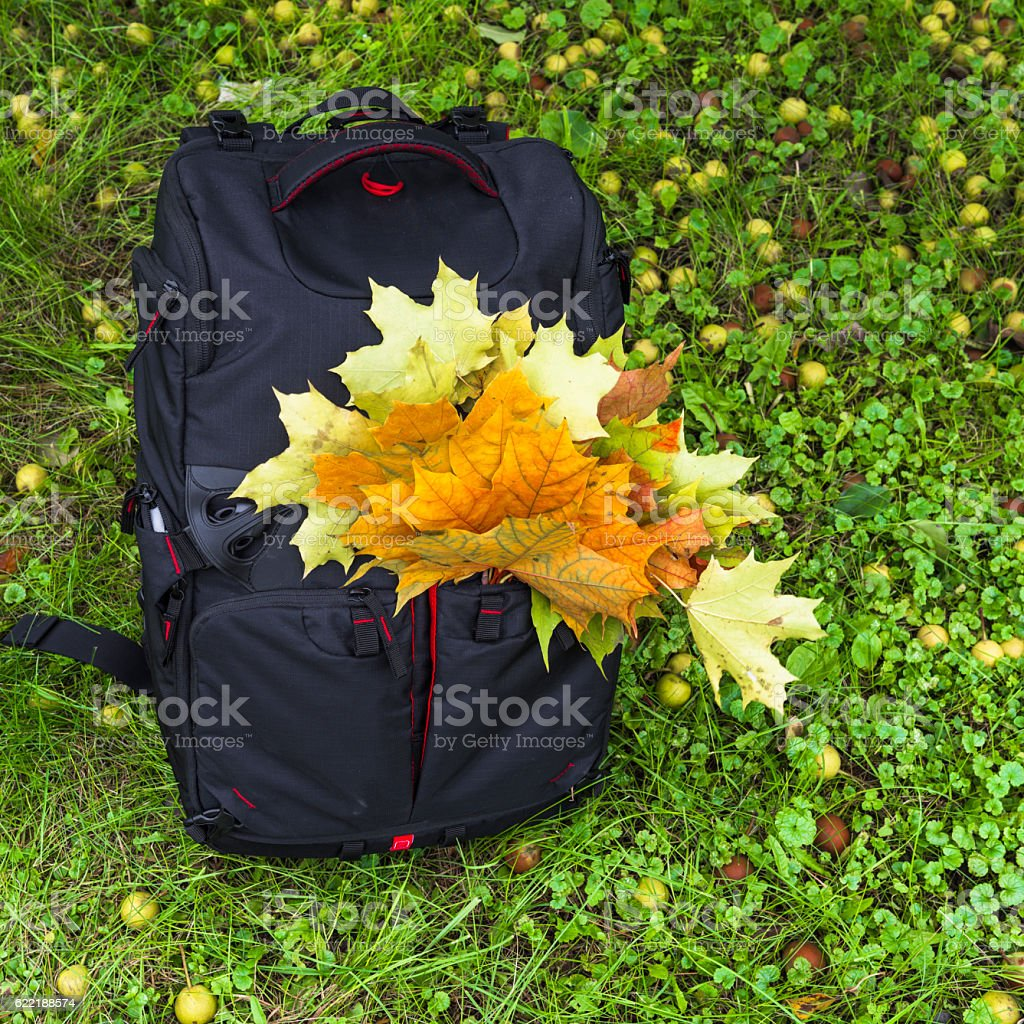 Autumn backpack of photographer stock photo