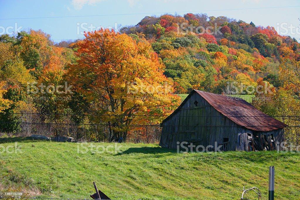Autumn Barn royalty-free stock photo