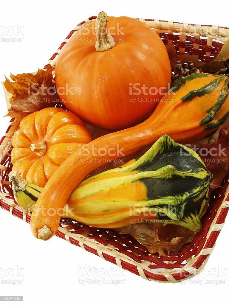 Autumn Basket royalty-free stock photo