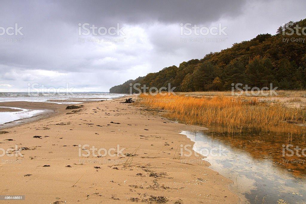 autumn beach of the Baltic Sea stock photo
