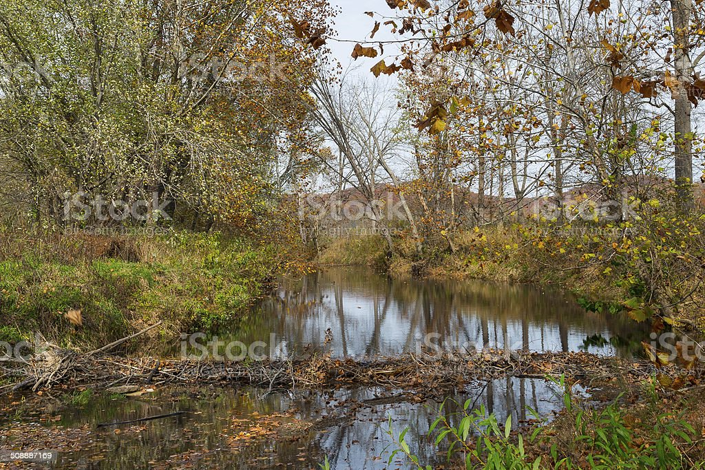 Autumn Beaver Dam in Brown County Indiana stock photo