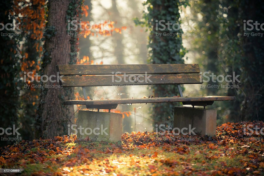 autumn bench with heart shape royalty-free stock photo