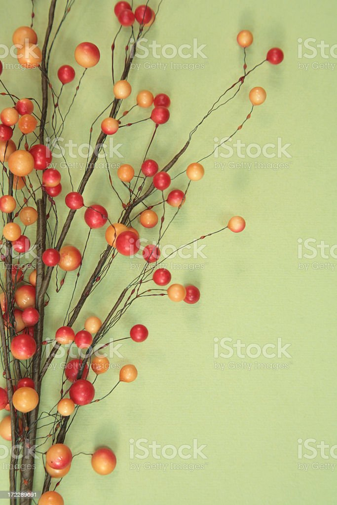 Autumn Berries on green background royalty-free stock photo