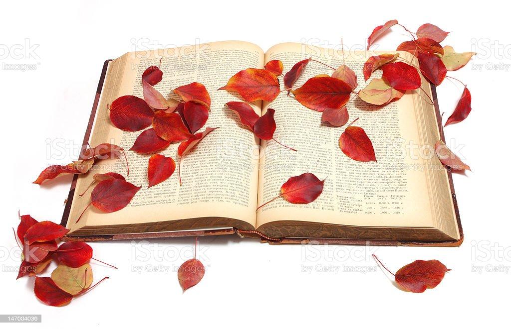 Autumn book royalty-free stock photo