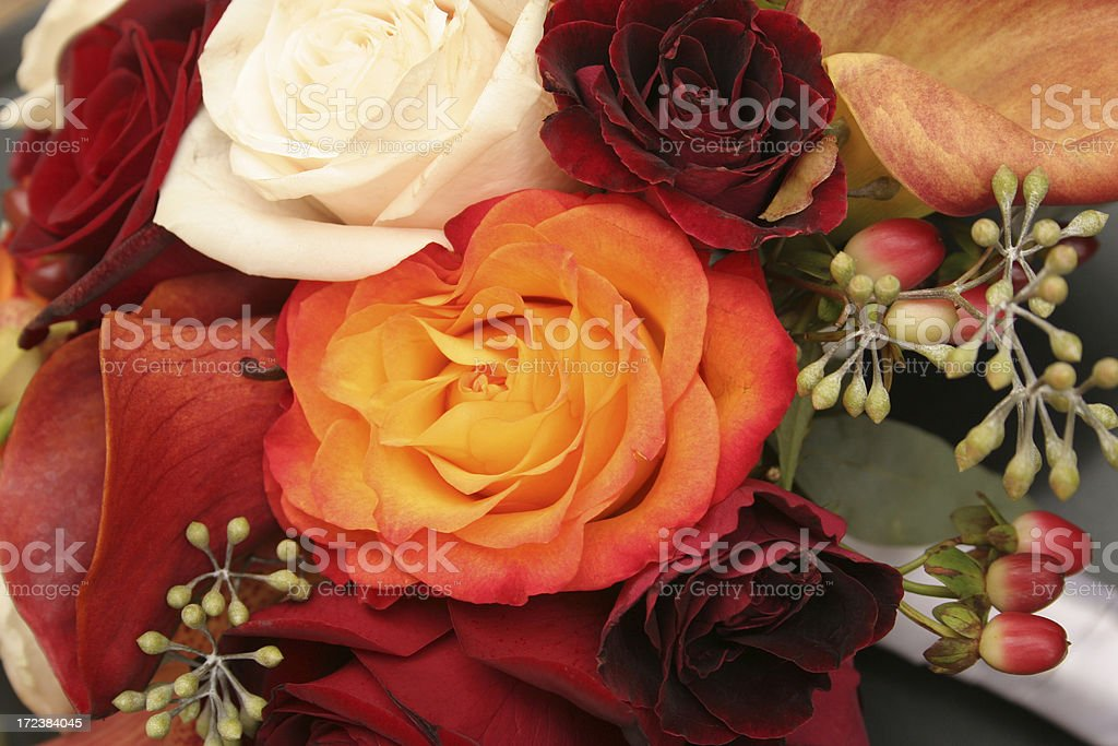 Autumn Bouquet Close-Up royalty-free stock photo
