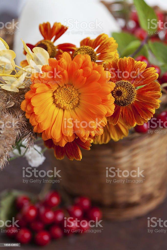 Buquê de outono foto royalty-free