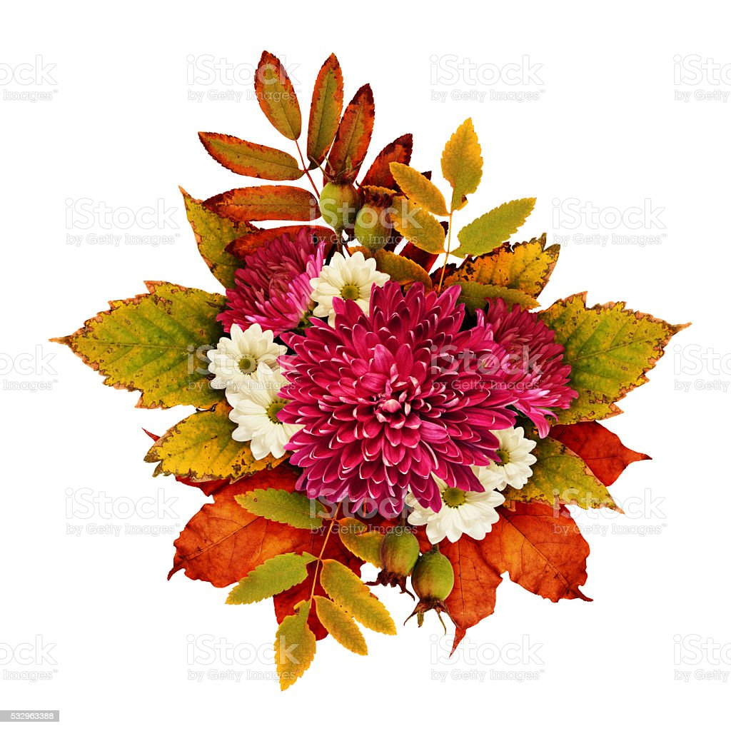 Autumn bouquet with aster flowers and dry leaves stock photo