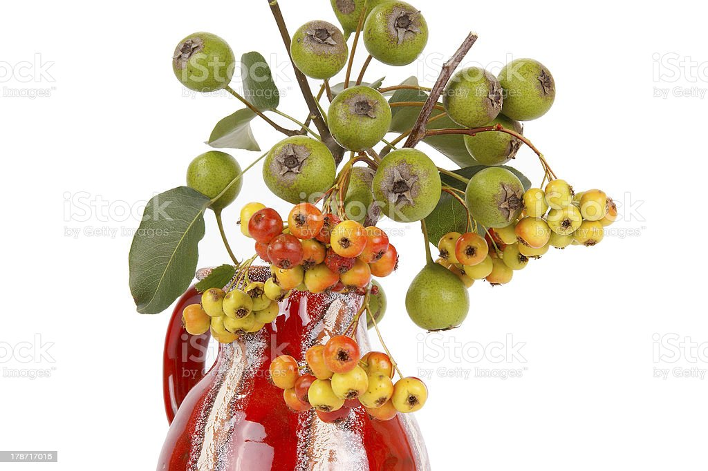 Autumn bouquet with berries of hawthorn and pear royalty-free stock photo