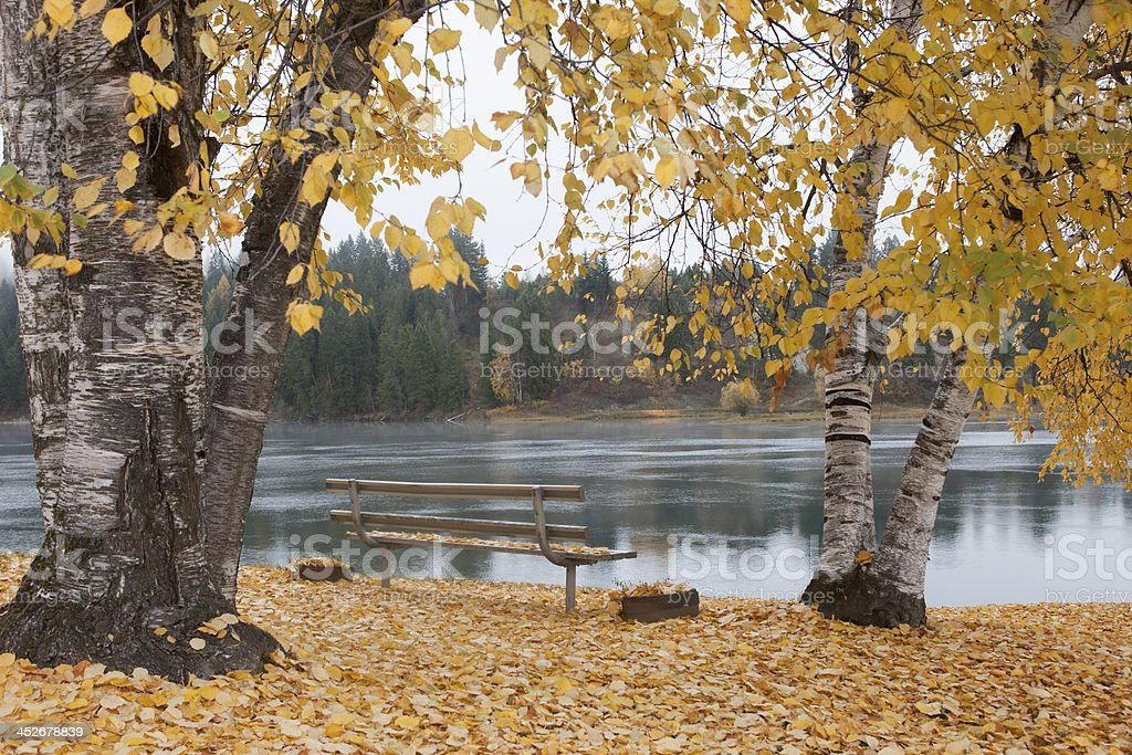 Autumn by Pend Oreille River. stock photo