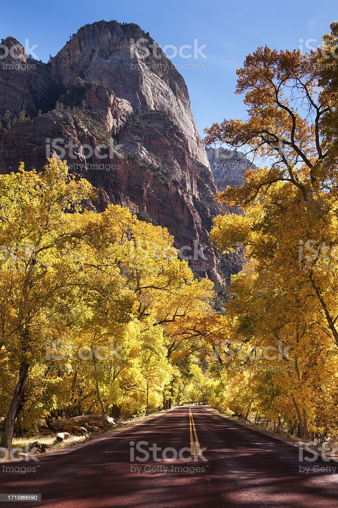Autumn canyon road in Zion National Park. stock photo