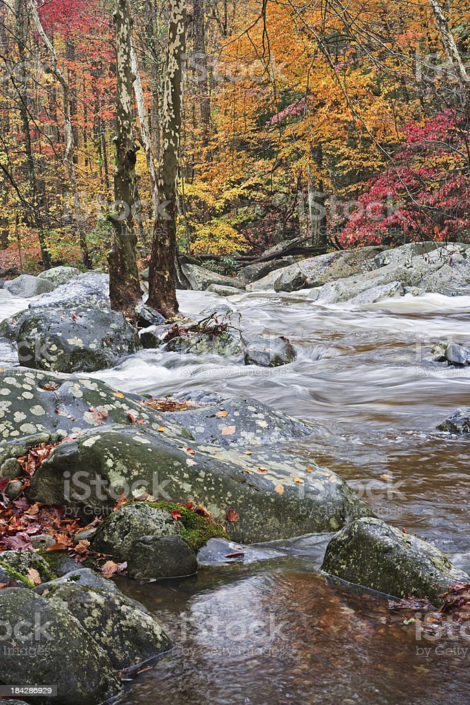Autumn cascade in the Smoky Mountains royalty-free stock photo