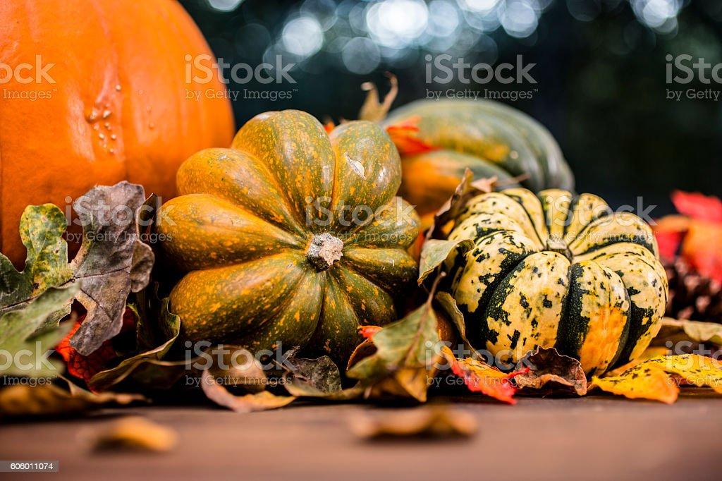 Autumn centerpiece with orange pumpkin, leaf decorations. stock photo