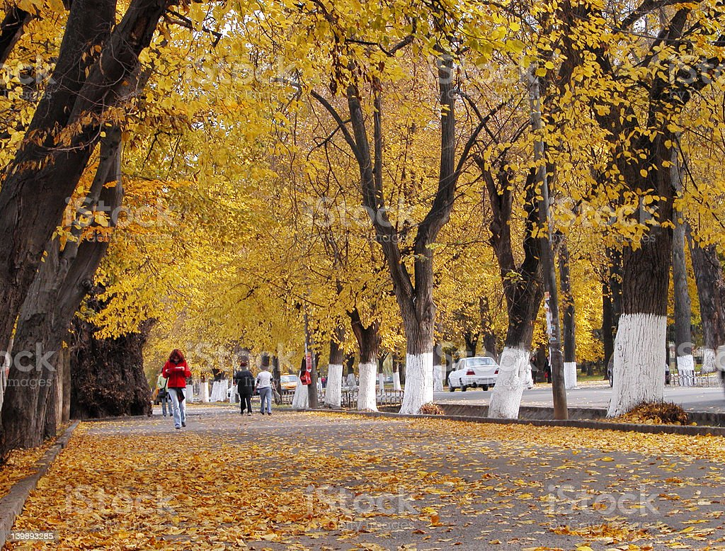 Autumn city street royalty-free stock photo