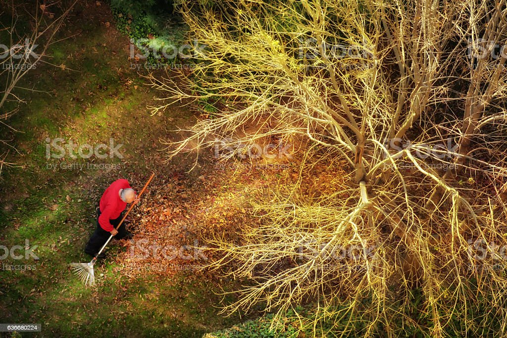 autumn cleaning stock photo