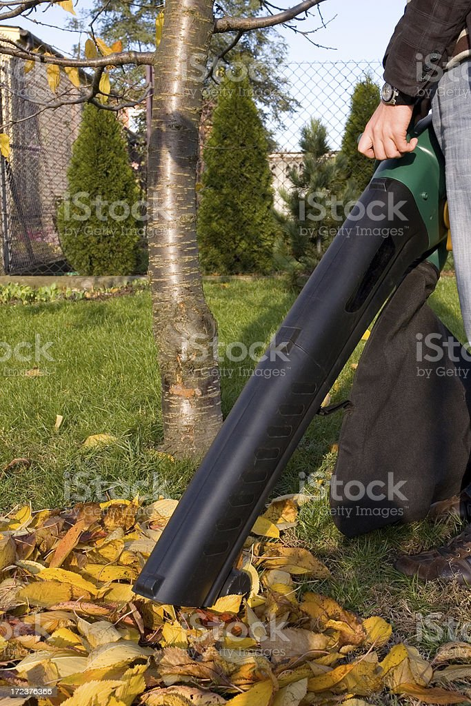Autumn Clean-up stock photo