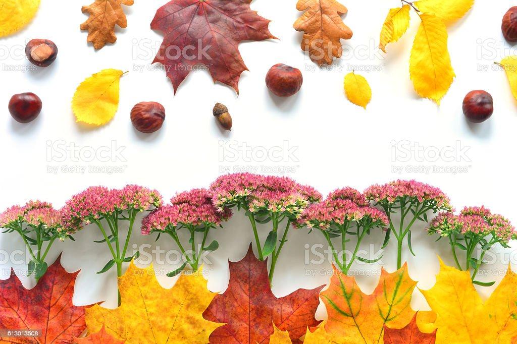 Autumn Closeup Border stock photo