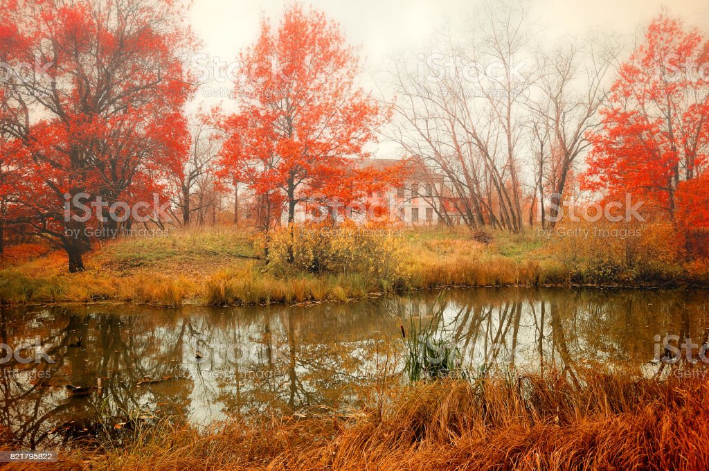 Autumn cloudy landscape in pictorial tones stock photo
