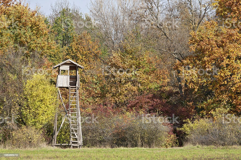 Autumn color forest with hunting stand stock photo