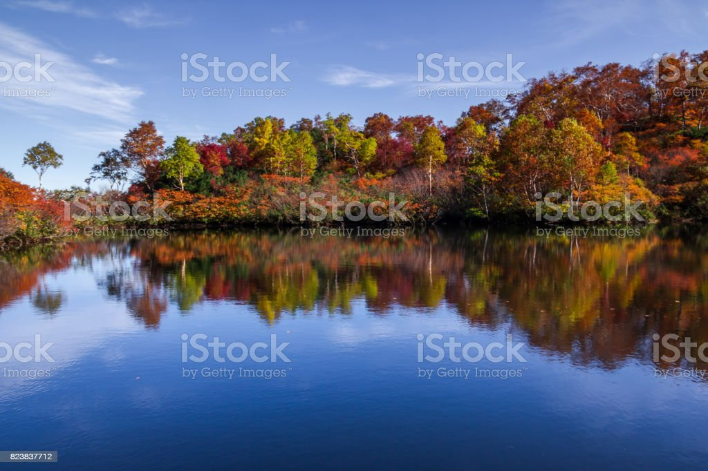 Autumn Color of Daisetsuzan National Park stock photo