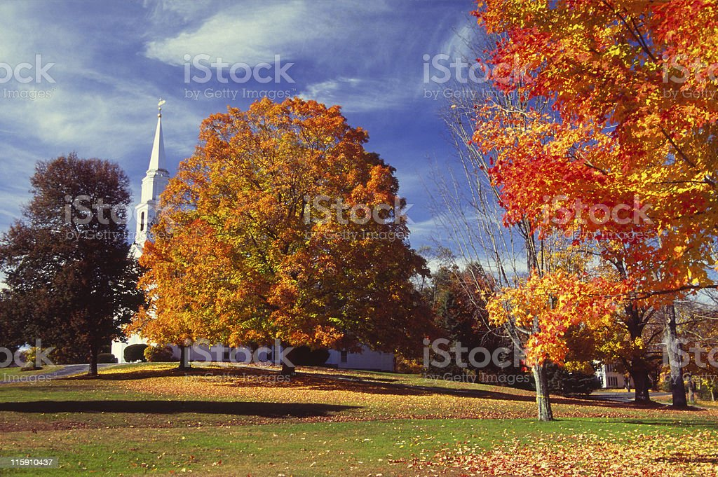 Autumn Color stock photo