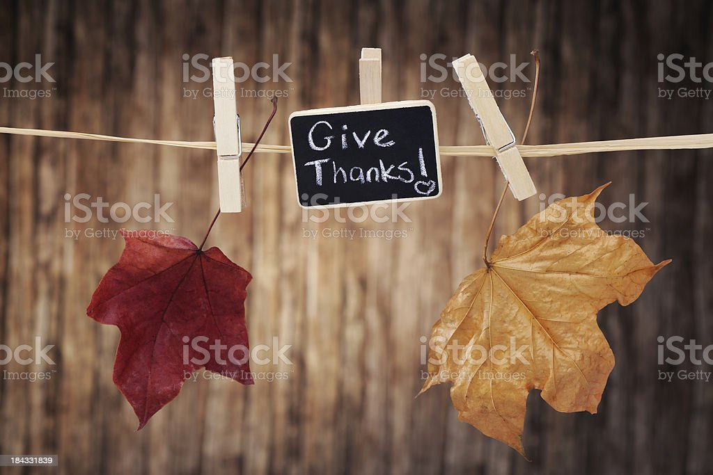 Autumn colored maple leaves hanging on clothes line royalty-free stock photo