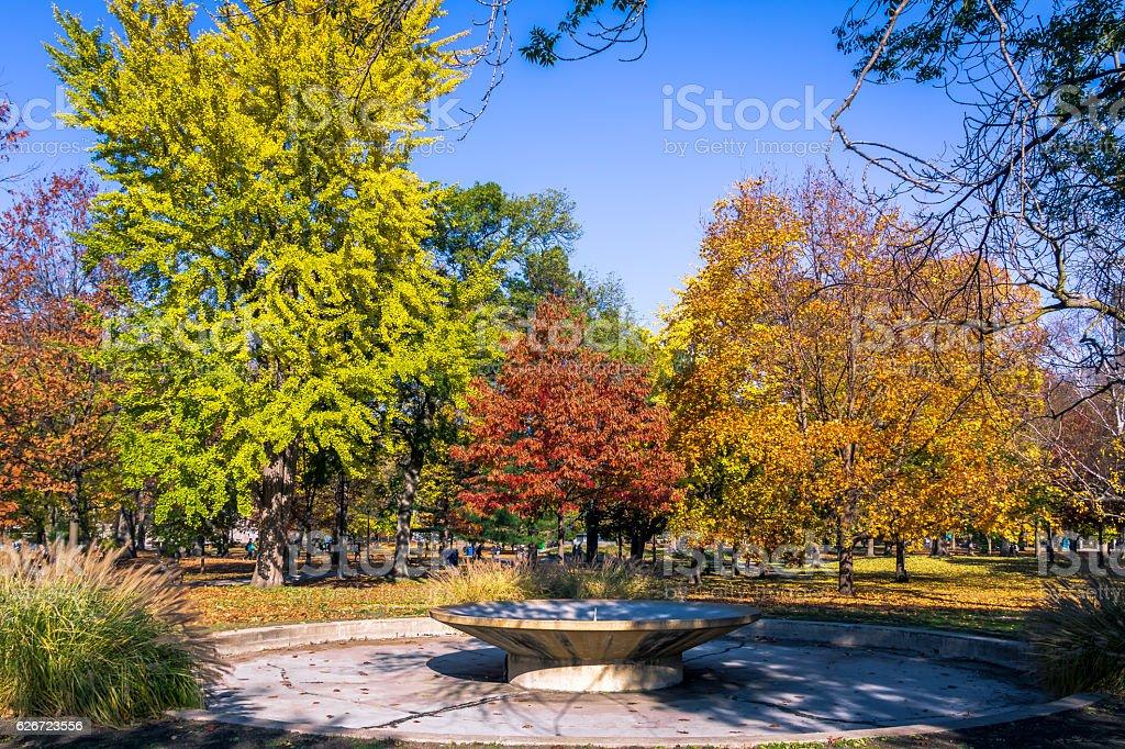 Autumn colorful vegetation of Queens Park - Toronto, Ontario, Canada stock photo