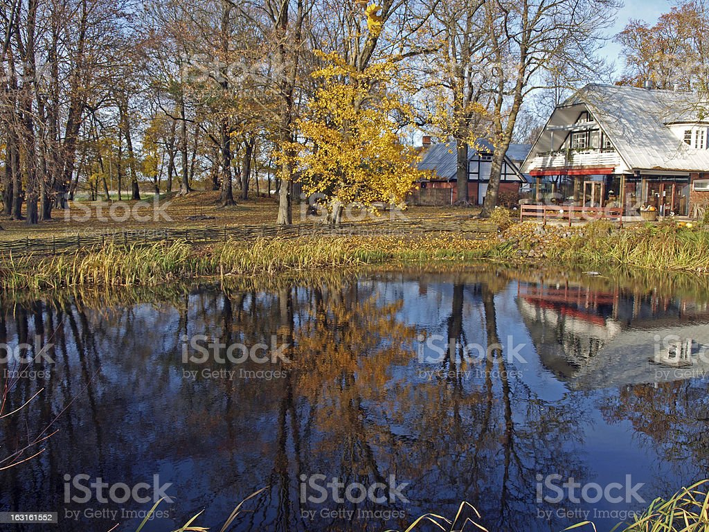 Autumn colors 2 royalty-free stock photo