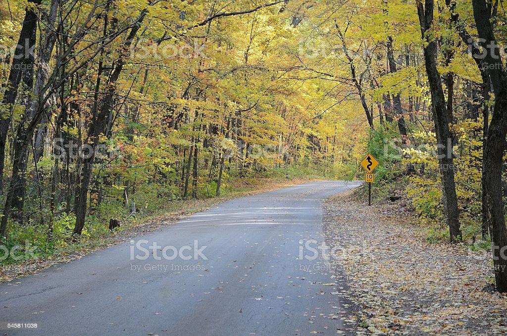 Autumn Colors Along a Rural Road stock photo
