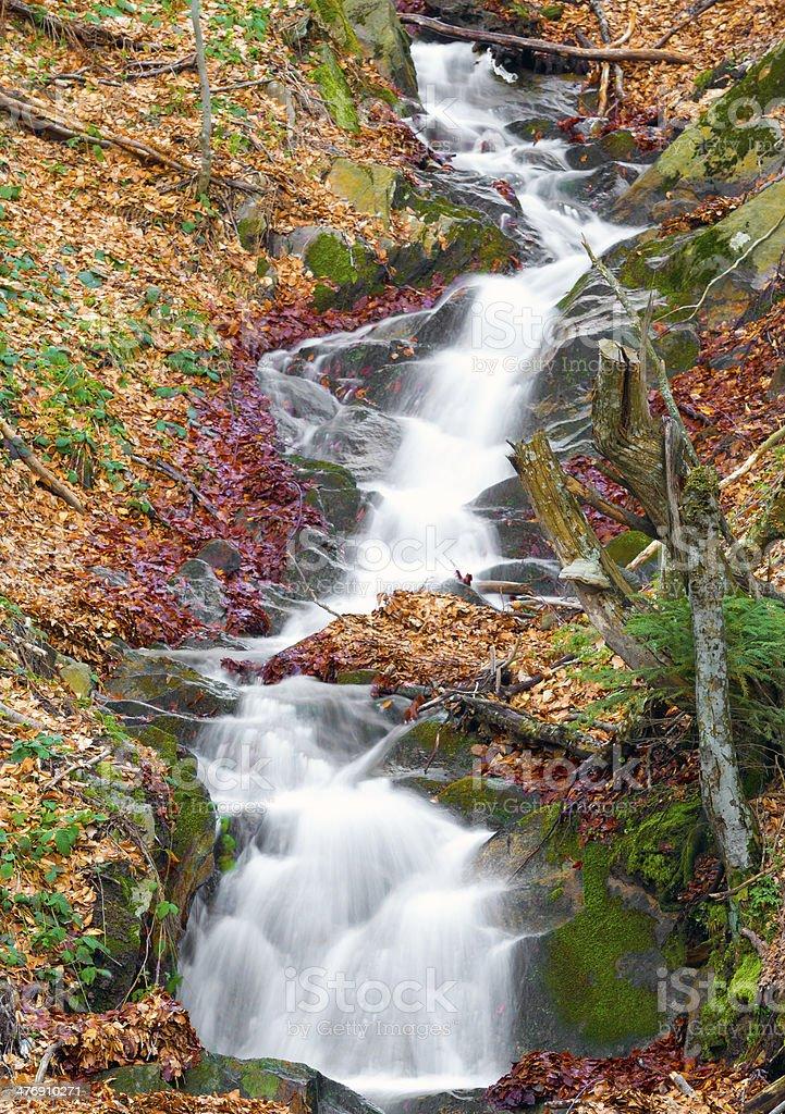 autumn colors arround waterfall stock photo