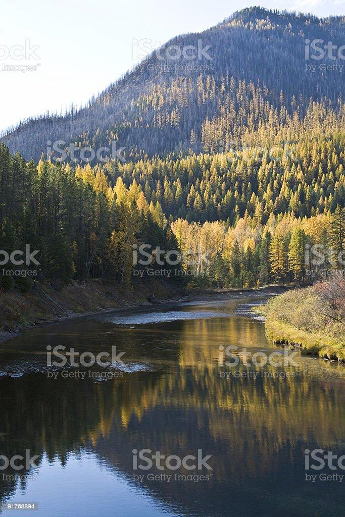 Autumn colors at Glacier National Park stock photo