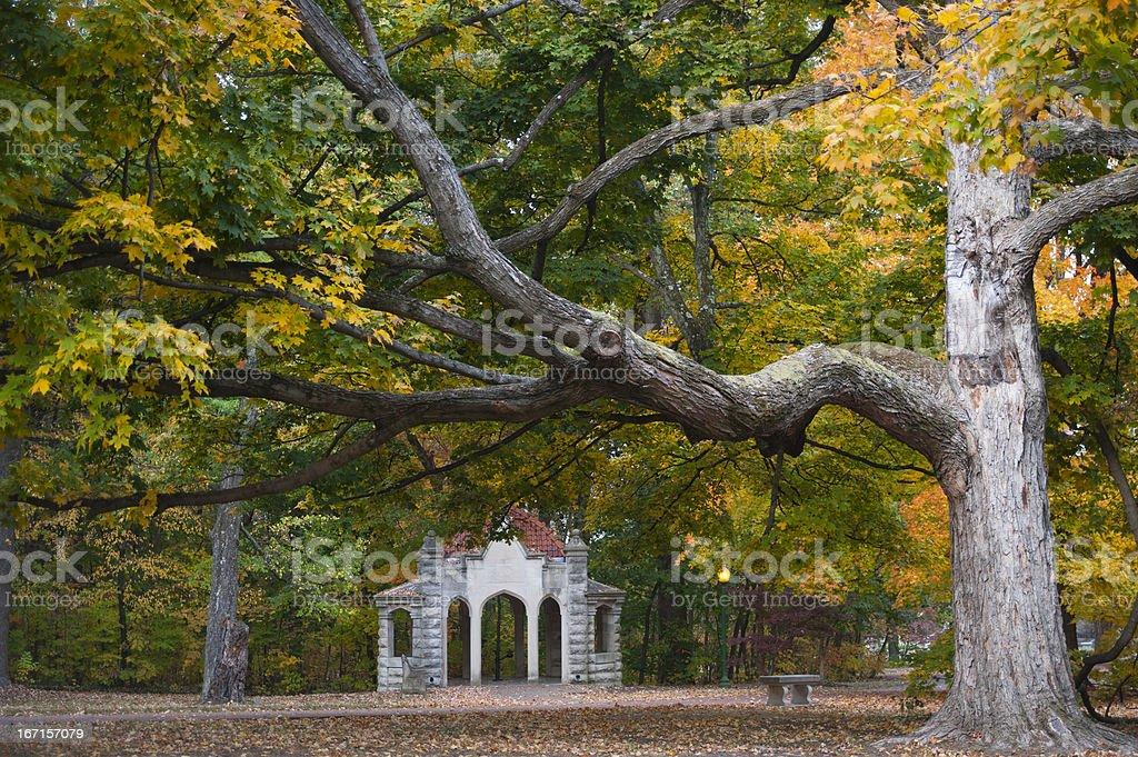 Autumn Colors at Indiana University royalty-free stock photo