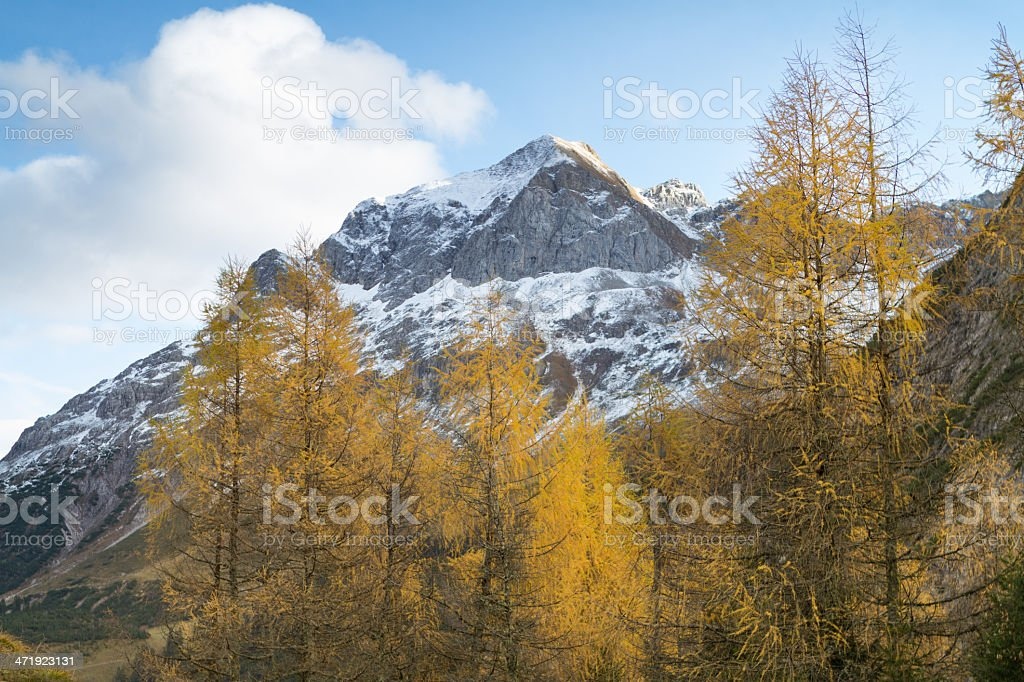 autumn colors in Austria royalty-free stock photo