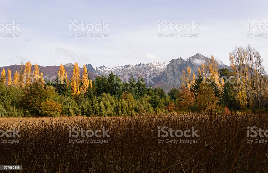 Colores de Otoño en Patagonia stock photo