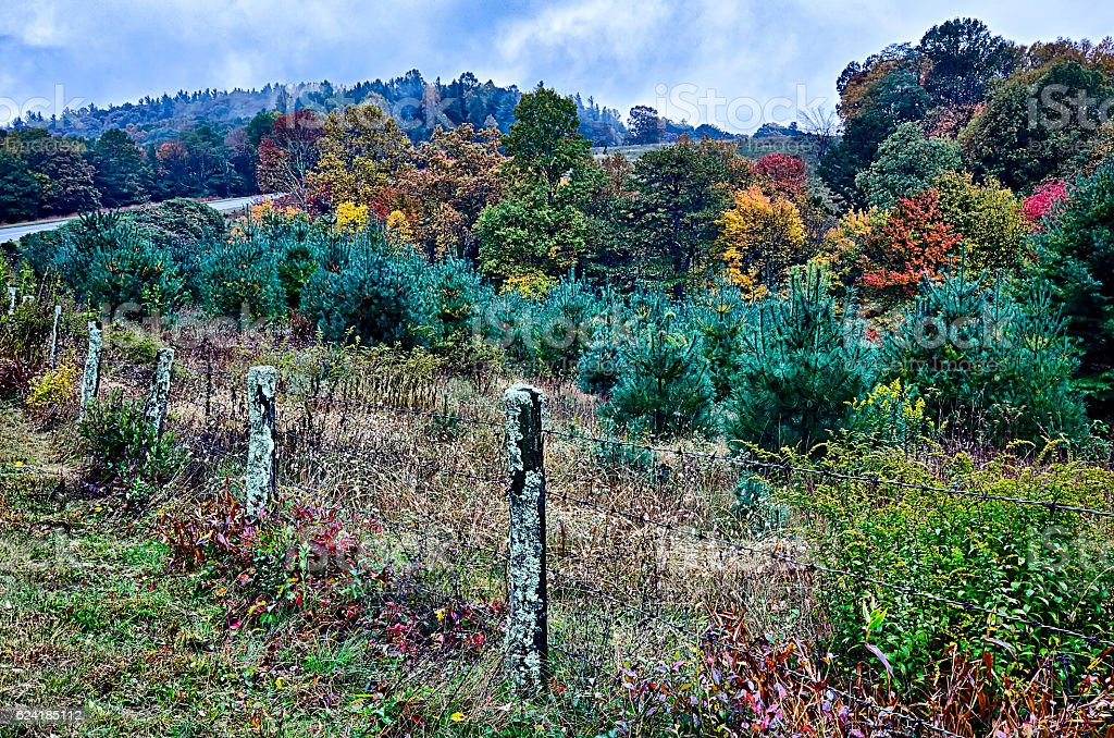 autumn colors in the blue ridge mountains stock photo