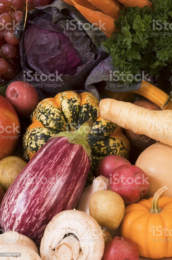 Autumn Colors of the Harvest Full Frame stock photo