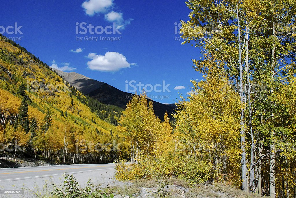 Autumn colors on US Highway 50 Monarch Pass Colorado stock photo