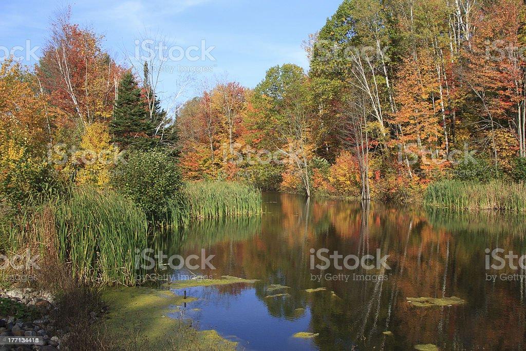 Autumn colors reflective stock photo