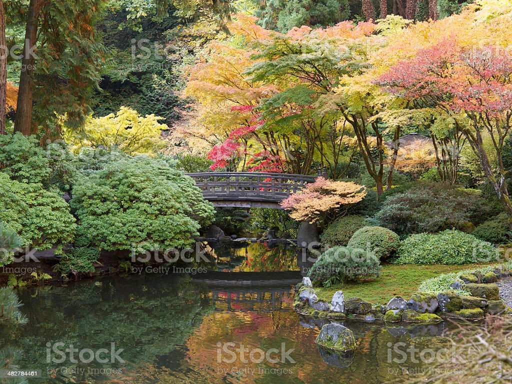 Autumn Colors with Pond Footbridge Japanese Garden Portland Oregon stock photo